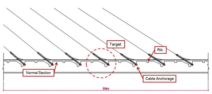 Longitudinal view of Target Model